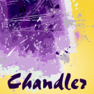 chandler-pro