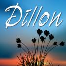 dillon-pro