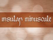 insular-minuscule