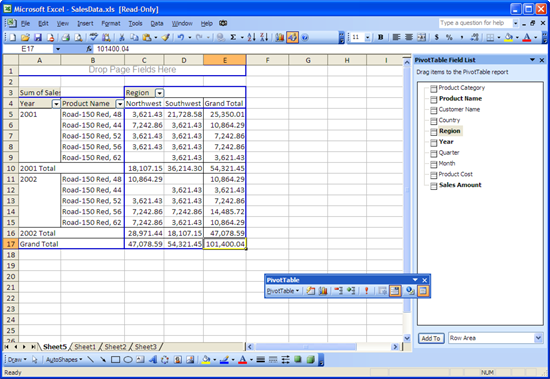 Microsoft Excel 2003 with PivotTable