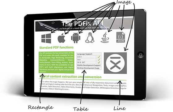 Extract data from PDF with API from PDFix | BinaryNow